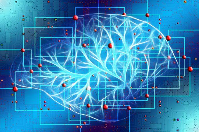 Artificial intelligence, Alexa, cardiac Arrest, CPR, The Federal, English news website