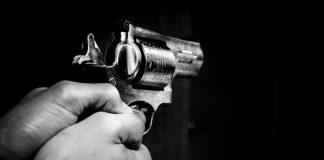 Gun - The Federal