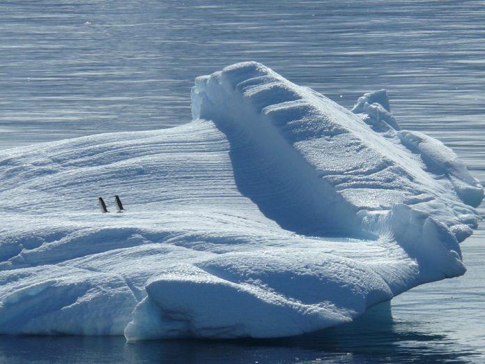 Antarctica-Iceberg-Glaciers-Penguins