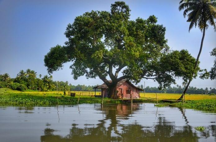 Water, crisis, Telangana, The Federal, English News Website