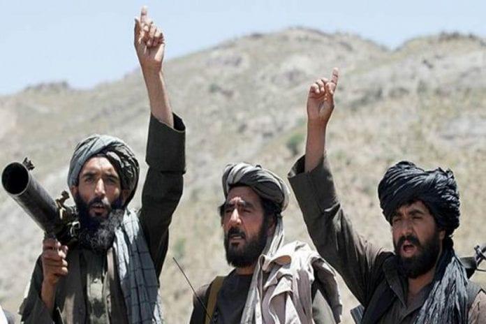 Taliban, Hamid Karzai, Afghanistan, Donald Trump, The Federal, English news website