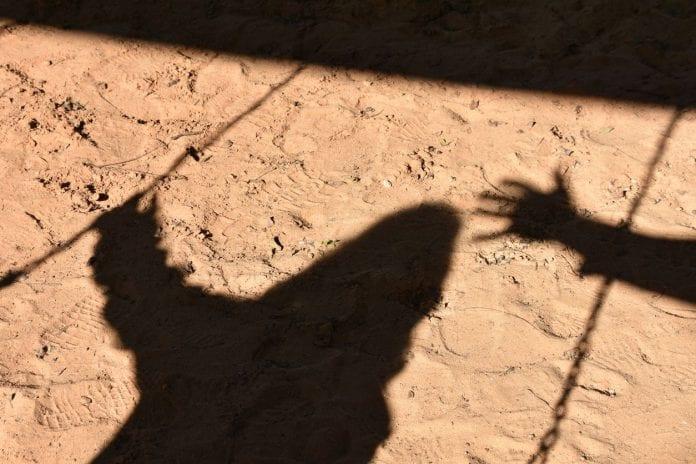 Hyderabad rape, rape crisis, Disha, Nirbhaya