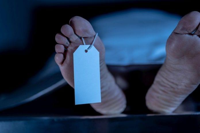 Telangana high court, Telangana, vet rape and murder case, encounter deaths