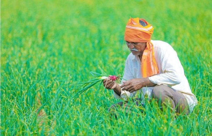Agriculture sector, Union Budget, farmers, 2019-20 budget, multiplier effect, Pradhan Mantri Krishi Samman Nidhi scheme, PM KISAN scheme, Pradhan Mantri Fasal Bima Yojana, PMFBY