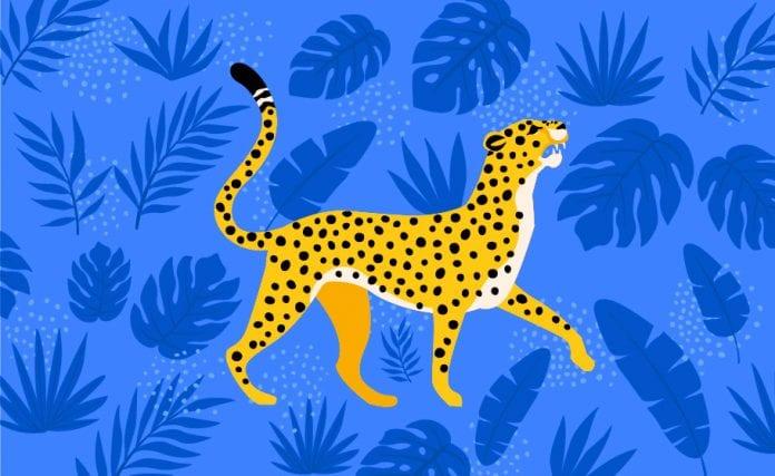 Cheetah speed faster than Bolt
