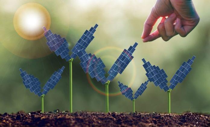 Solar power plants farm farmers
