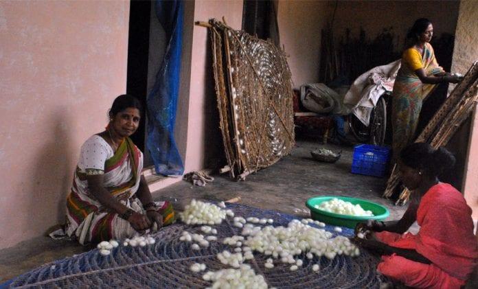 Silk, silk cocoon, sericulture