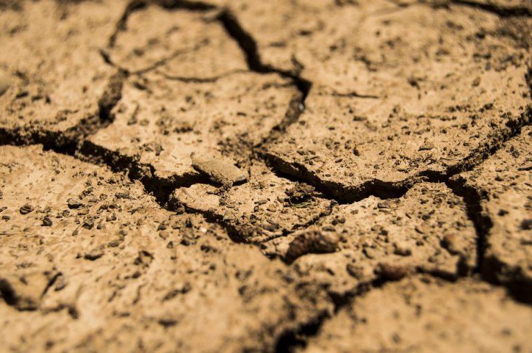 Drought worsens in Karnataka as pre-monsoon rains play truant