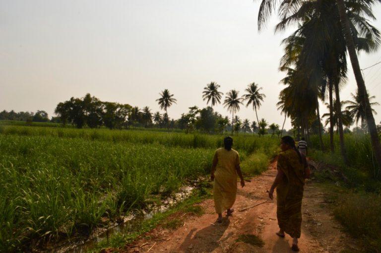 Sugar factories' dues may push farmers' votes against JD(S) in Mandya